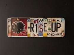 NFL- Atlanta Falcons