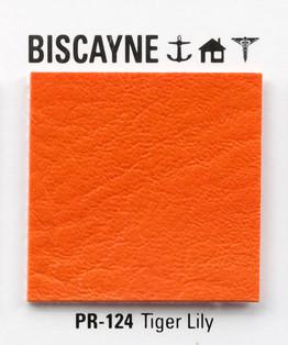 BISCANE.jpg