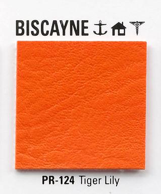 Estilo Biscayne