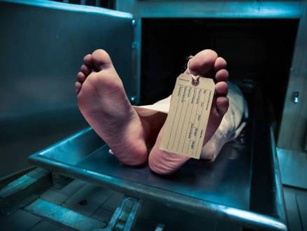Empresa que quer trazer 'mortos' de volta à vida espera resultados em 5 anos