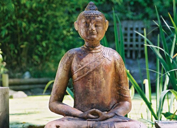 Giant Mongolian Buddha WS