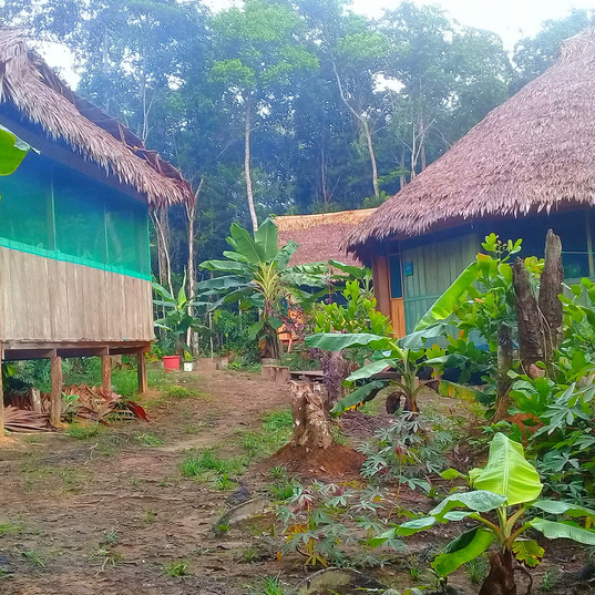 Kambo Wasi Center