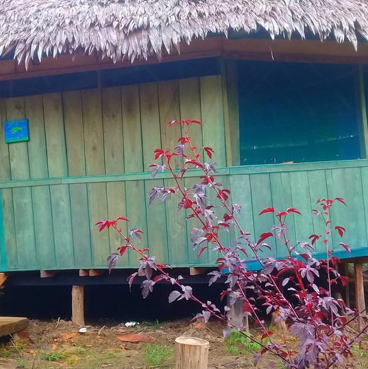 KamboWasi