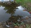 Iquitos, Peru - Park Transformation