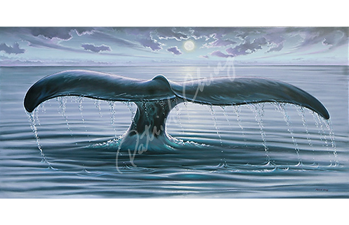 Whale Tale in Moonlight