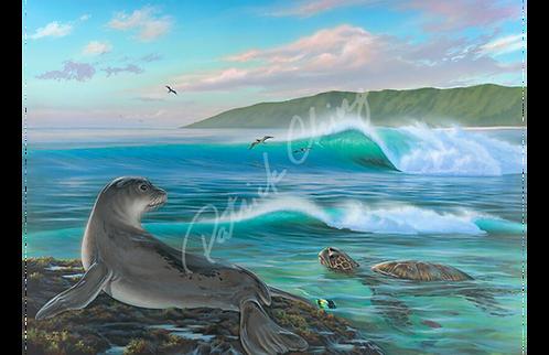 Seal Surf