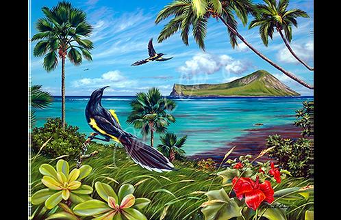Ka ʻOʻo Mau Loa