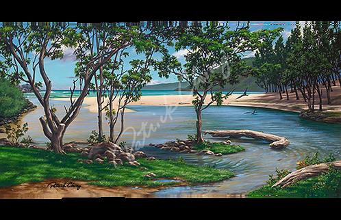 Kahili Beach