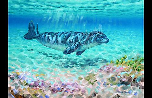 Monk Seal Mosaic