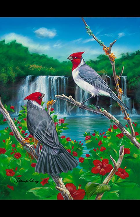Brazilian Cardinals