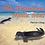 Thumbnail: The Hawaiian Monk Seal