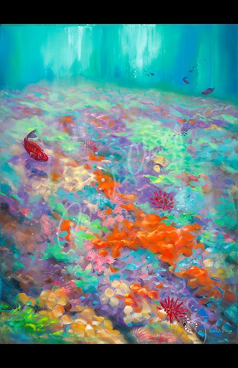 Coral Palette