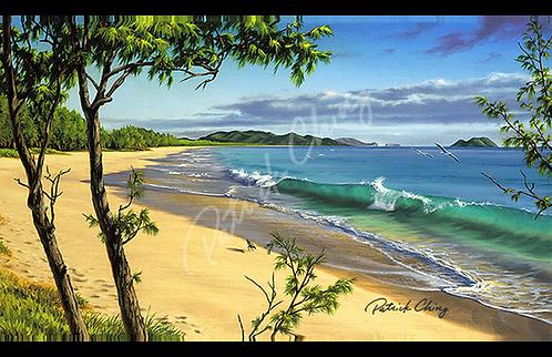 Waimānalo Shorebreak