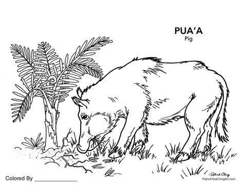 Puaʻa