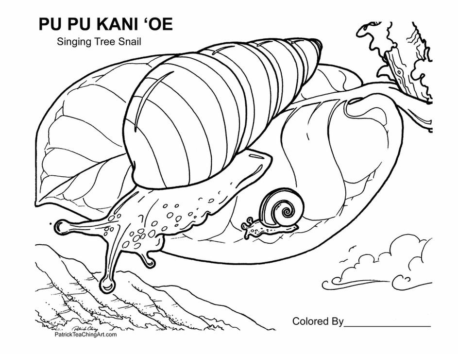 Pu pu kani ʻoe