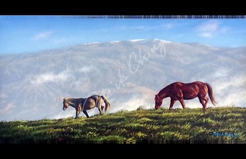 Red Horse Mauna Kea