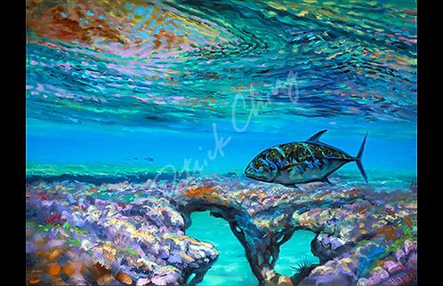 ʻOmilu Reef