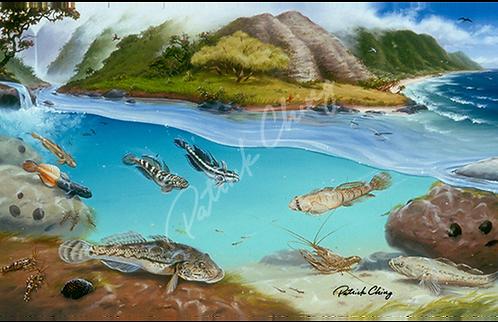 Hawaiian Stream Animals
