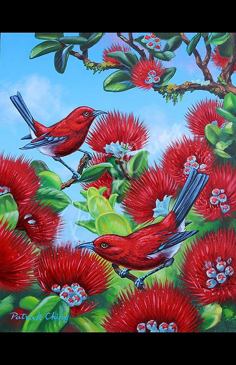 ʻApapane Lehua