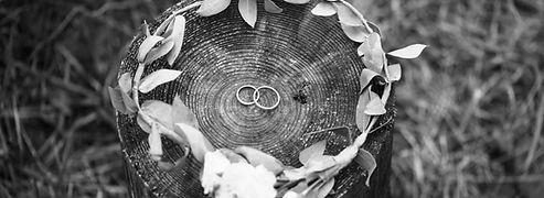 Anillos de boda y corona nupcial