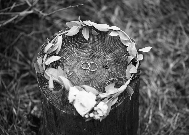 Anéis de casamento e coroa nupcial
