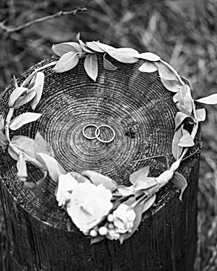 Wedding Rings and Bridal Crown
