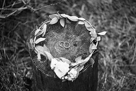 결혼 반지 및 신부 크라운