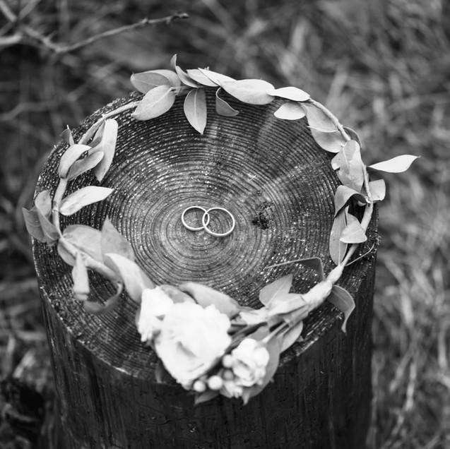 Wedding Rings and Bridal Crown