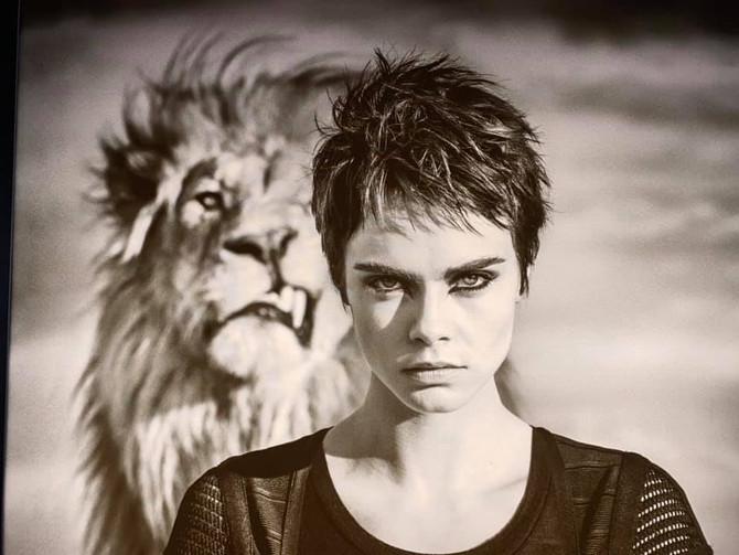 Awakens wild within : 女性として野生に帰る