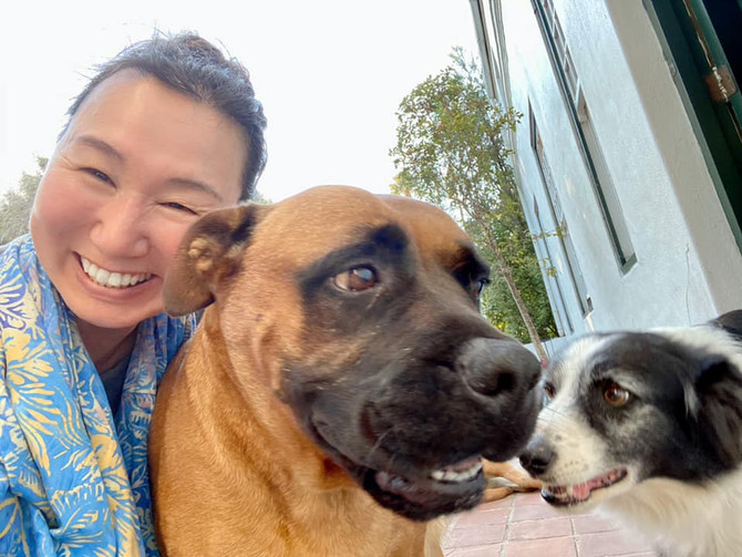 Dogs love me crazy! : 3匹の犬が押し寄せてきた_13