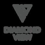 DV-logo-70-for-dark-vertical.png