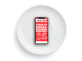 Local Business Support - Web Design