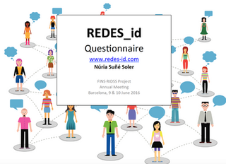 REDES-id Questionnaire