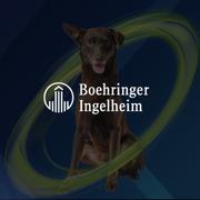 Boehringer Ingelheim - Nexgard
