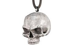 TND Bill's Skull Render