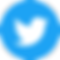 twitter-social-icon-circle-color_3.png