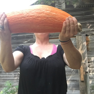 """Gete Okosomin - """"The 500 year old squash"""""""