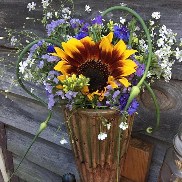 Sunflowers are forever my fav!