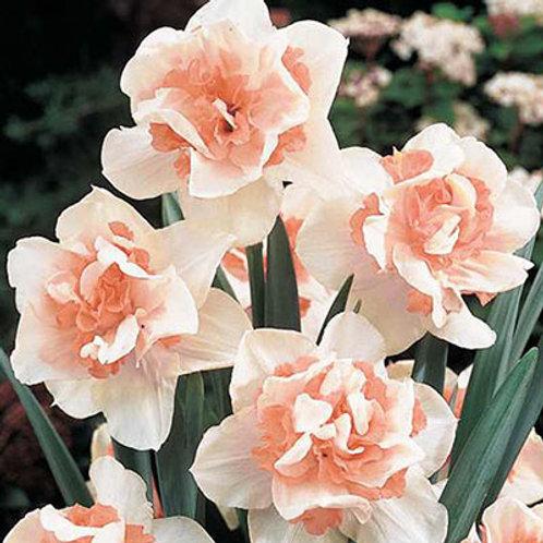 Spring Bouquet Subscription (2021)