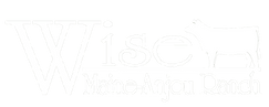 WiseRanch_logo_web_edited.png