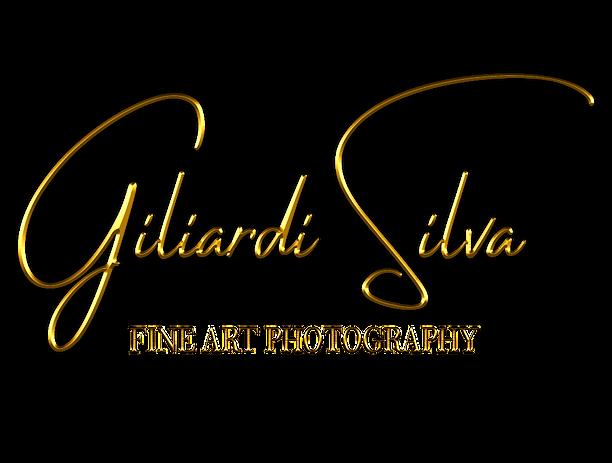 logo_giliardi_fineart_edited.png