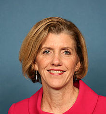 Kathy Dahlkemper, Erie County Executive