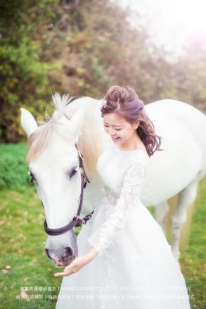 horse - 14.jpeg