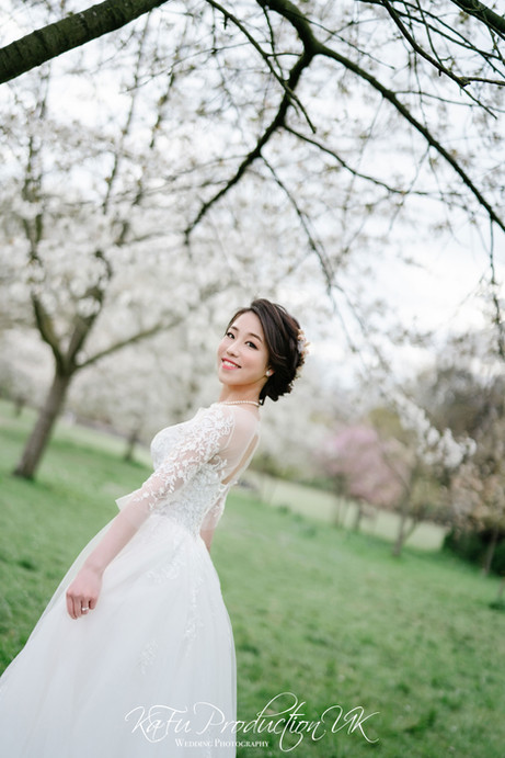 Cherry blossoms (13).jpg