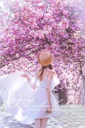 Cherry blossoms (31).JPG