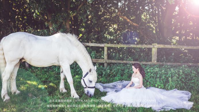 horse - 2.jpeg