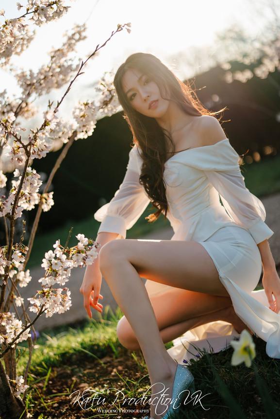 Cherry blossoms (26).jpg
