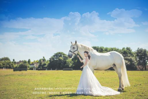 horse - 5.jpeg