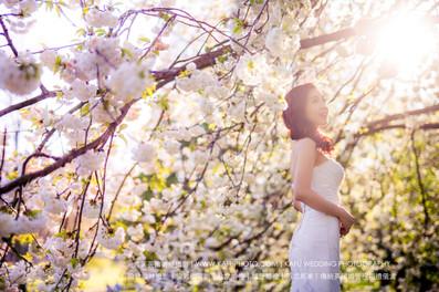 Cherry blossoms (33).jpg