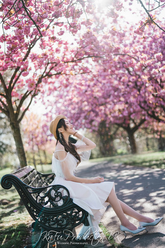 Cherry blossoms (18).jpg